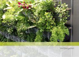 concenta-austria vertikalgarten